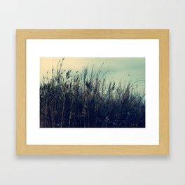 Evening in the fields Framed Art Print
