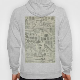 Fossil Chart Hoody