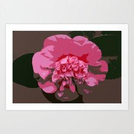 Pink Camelia Art Print
