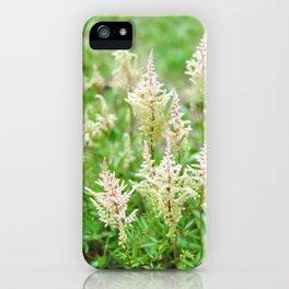 Deer Isle Series: Run Through the Meadow iPhone Case