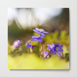 Wildflowers Spring Forest #decor #society6 #buyart Metal Print