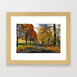 Road Trippin Framed Art Print