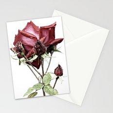 Rose FX Stationery Cards