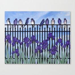 purple martins & purple irises Canvas Print