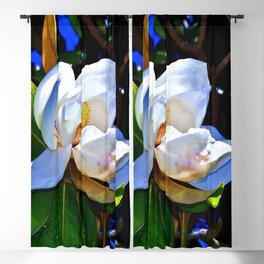 Magnolia Blackout Curtain