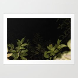 2017-09-22 Art Print