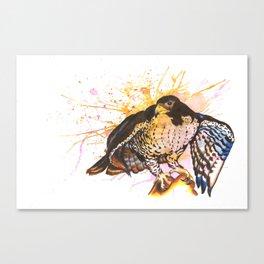 Colorful eagle Canvas Print