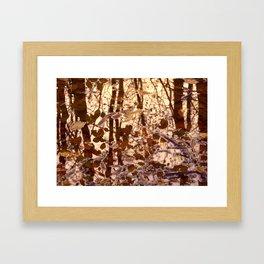 swamp II Framed Art Print
