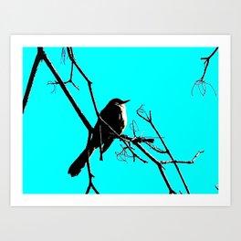 aqua bird Art Print