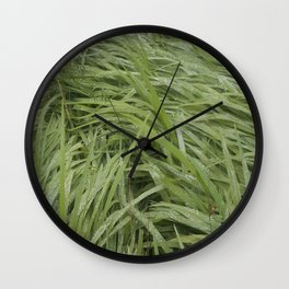 California Grass & Dew Wall Clock