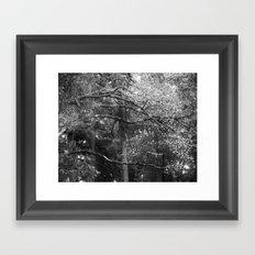Spring Veins Framed Art Print