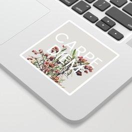 Carpe Diem Sticker
