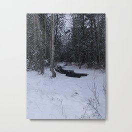#406 BR CK UNDER ICE FORMATIONS,  POND CRK BITTERROOT MT Metal Print