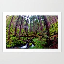 Olympic Peninsula Greens Art Print