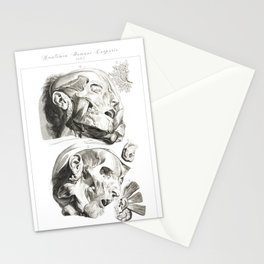 Human Anatomy Art Print HEAD MUSCLE FACE Vintage Anatomy, doctor medical art, Antique Book Plate, Me Stationery Cards