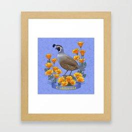 California State Bird Quail and Golden Poppy Framed Art Print