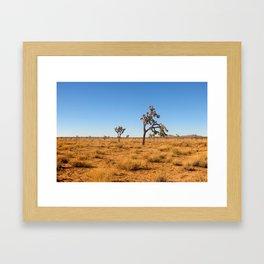 Joshua Tree 002 Framed Art Print