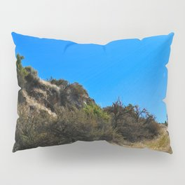 Dust and Dirt Pillow Sham