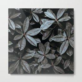 Leaves by Annie Spratt Metal Print