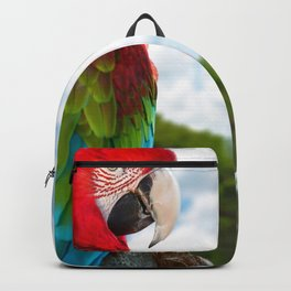 Amazing Gorgeous Exotic Tropical Bird At Shore Zoom UHD Backpack