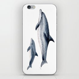 Atlantic spotted dolphin iPhone Skin