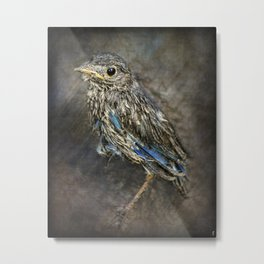 Fresh From The Nest Metal Print