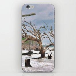 Drift Wood Beach 3 iPhone Skin