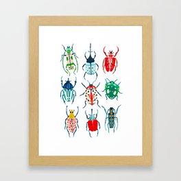 Garden Beetles Framed Art Print