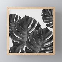 Monstera_Le_2 Framed Mini Art Print