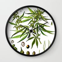 cannabis Wall Clocks featuring Cannabis Sativa - Koehler (1887) by Ouijawedge