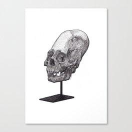 Artificial Cranial Deformation Canvas Print