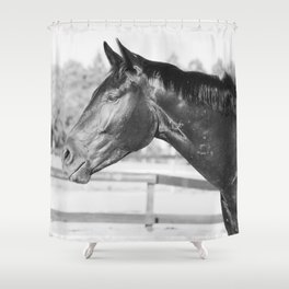 Black & White Stallion Shower Curtain