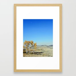 Bison in Lamar Valley, Yellowstone Framed Art Print