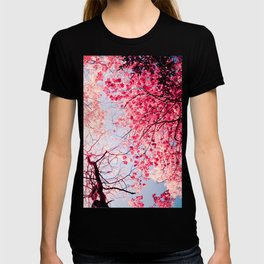 Color Drama I T-shirt
