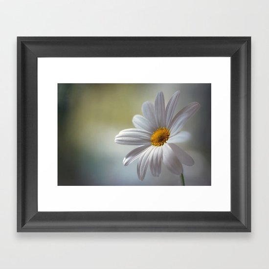 Daisy delight Framed Art Print