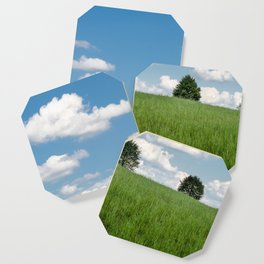 Trees In A Field Coaster