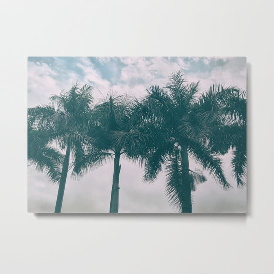 Palm Trees in tropical climate Metal Print