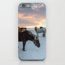 Iceland Horses iPhone Case