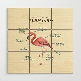 Anatomy of a Flamingo Wood Wall Art
