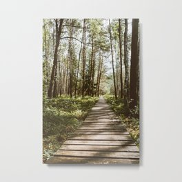Through the swampy forest Metal Print