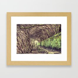 The living forest Framed Art Print