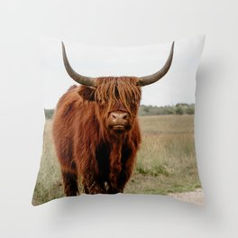 Highland Cow in nature | Scottish Highlanders, cattle in the Netherlands | Wild animals | Fine art travel and nature photography art print Throw Pillow