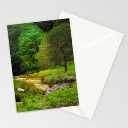 Alone in Nature  Stationery Cards