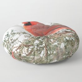 Regal Cardinal Floor Pillow
