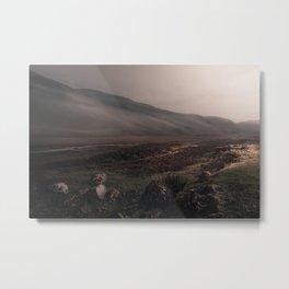 Highland Mist Metal Print