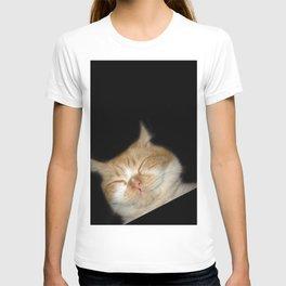 Funny Sleeping Cat T-shirt
