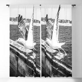 Seagull Taking Flight B&W // California West Coast Pier Vibes Beach Ocean Surf City USA Blackout Curtain