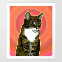 Pablo Cat Art Print