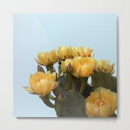 Prickly Pear #3 Metal Print