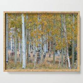Autumn Aspen Trees Serving Tray